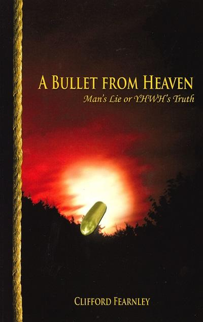 A Bullet from Heaven (1 book)
